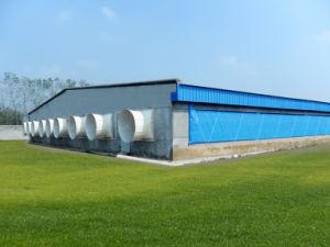 Granja Porcina moderna estructura de acero Construcción