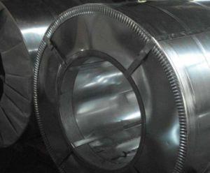 Il colore ha ricoperto/bobina d'acciaio galvanizzata preverniciata /Sheet