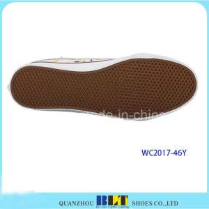 Clourful imprimiu sapatas de lona para mulheres