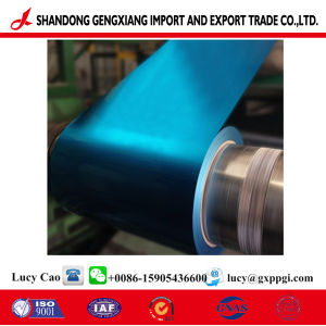 Revestido de color PPGI bobinas de acero de la fábrica de casa contenedor