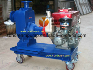 ZW único cilindro da bomba de água