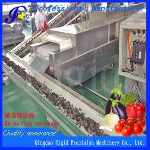 Gemüseunterlegscheibe, Ausschnitt, Packmaschine-Nahrungsmittelaufbereitenmaschinerie