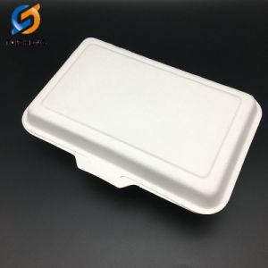 2 compartiments Boîte de bagasse Suagarcane carré