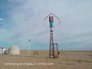 3000W Maglev Vertikale Windturbine mit CER Rohs UL-Zertifikat