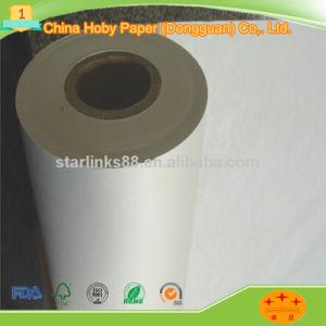 48 Modèle de vêtement GSM du rouleau de papier traceur