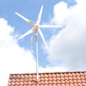 Hye Efficient 400W Wind Generator Price
