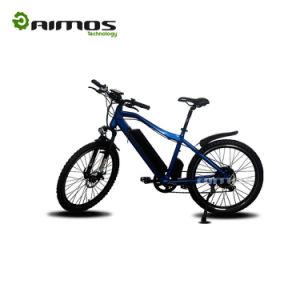 Bici eléctrica de la potencia grande al por mayor del fabricante