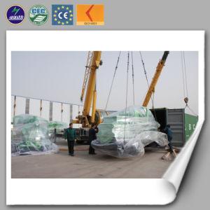 Générateur de biogaz/ 50-600kw Power Generation Ce l'ISO a approuvé les déchets animaux de la Chine de la fabrication