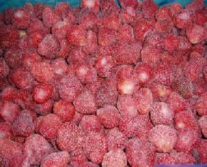 Caldo vendendo 2018 fragole fresche del raccolto IQF