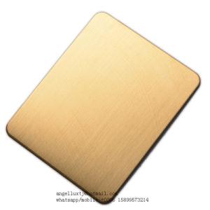 Foshan 공장 PVD Bronze+Brushed 완료 304의 스테인리스 장식적인 장