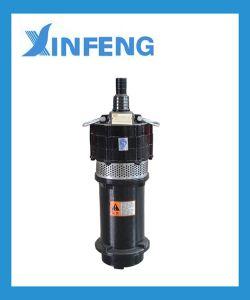 Qd 0.75kw-1 van de Fabrikant van China Pomp de Met duikvermogen van het Water