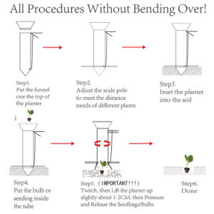 Ilot manipulé manuel de l'ampoule pour transplanter des semis de légumes du semoir