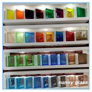 Blocchetto vetro/vetro libero della grata (mattone) con la propria fabbrica