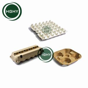 [هيغقوليتي] صغيرة قدرة بيضة صينيّة [مشن ببر] قولبة بيضة علبة إنتاج بيضة طبق يجعل آلة