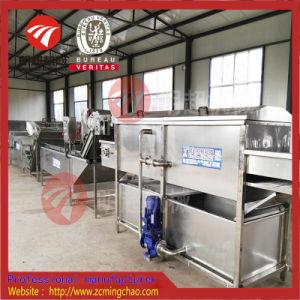 야채 과일을%s 청소 기계 고압 세탁기술자