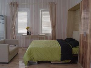 소파와 책꽂이를 가진 수직 기우는 머피 벽 침대
