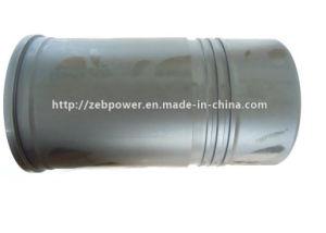 실린더 강선을%s (3800328) Cummins Engine 부속