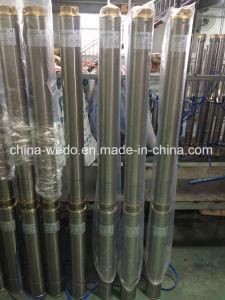 4SD Pomp de Met duikvermogen van het Water van het roestvrij staal, de Pomp van het Roestvrij staal diep goed