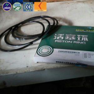 Parti diesel manuali del generatore del gas dell'OEM Jichai/Shengdong dell'elemento della pompa di olio