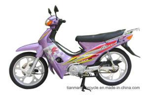 Motociclo classico di disegno 110cc Cub (TM110-2)