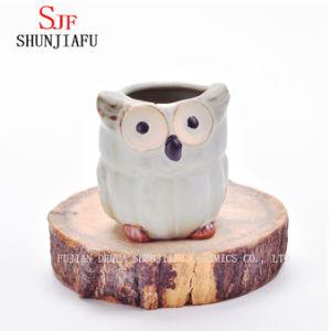 Индивидуальные дизайн малых керамические Плз Flower Pot