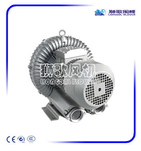 Liongoal seitliches Kanal-Gebläse für CNC-Ausschnitt-Maschine