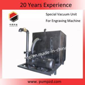 De vacuüm VacuümEenheid van de Machine van de Gravure van de Machine