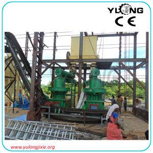 Grande pallina della biomassa di capienza di 2 tonnellate/ora che fa linea