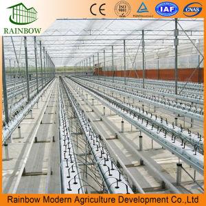 Systemen van de Druppelbevloeiing van de Fabriek van China de Hoge Efficiënte Voor het Landbouwbedrijf van de Landbouw