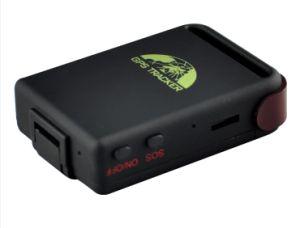Tk102b SIM Card GPS Tracker mit Software Tracking Platform