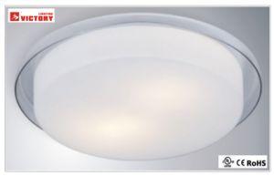 現代ガラス表面の台紙装飾的なLEDの天井灯