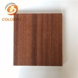 Comitato acustico del legname di legno Micro-Perforato moderno di Technniques