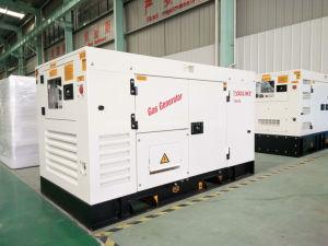 60Hz 3 홈을%s 단계 12kw 천연 가스 발전기