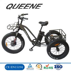 Rainha das Etrike 48V/250W/500W E-Triciclo Bicicletas eléctricas de três rodas