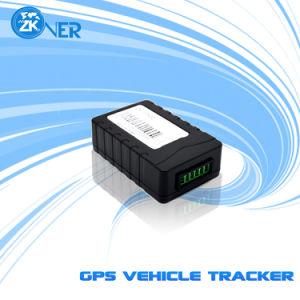 Fahrzeug-Verfolger GPS-GPRS mit aufspürendem Echtzeitposition Oktober 800 - D