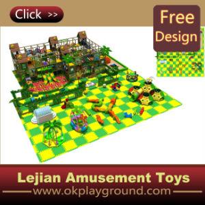 Fr1176 Terrain de jeux intérieur avec un haut niveau diapositive (ST1424-12)