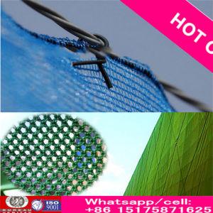 2016年の工場供給の高品質のHDPEのネットまたは風の壊れ目を囲う深緑色の塀のネットか風の塵の網の網または風