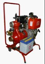 Haut de levage d'aspiration de carburant diesel marin CWYG de la pompe incendie d'urgence (série)