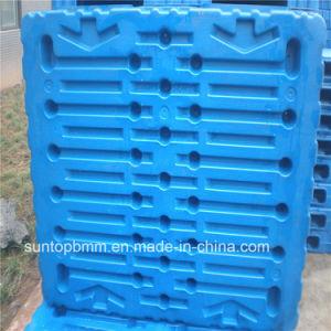 إمداد بلاستيكيّة من مستودع تخزين من أمنان