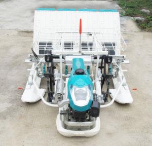 Trapiantatrice ambulante del riso della Cina 2zf-430