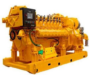 20kw y 700 kw de energía de biogás generador eléctrico
