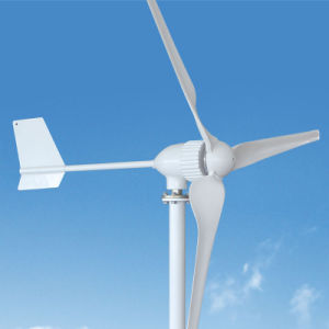 800W 24V/48Vの販売の中国の水平の軸線の風力