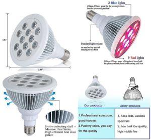 il prezzo di fabbrica 12W LED si sviluppa chiaro per la coltura idroponica della pianta d'appartamento