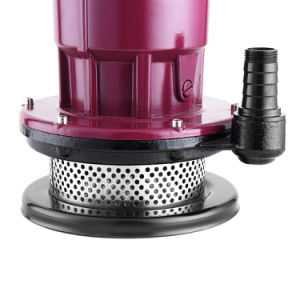 Qualität Qdx Garten Using Unterseeboot-Pumpe des Trinkwasser-0.5HP 0.75HP 1HP 1.5HP