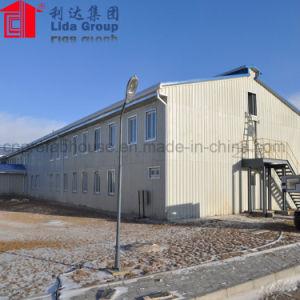 低価格の産業前にエンジニアのプレハブの鉄骨構造の建物の倉庫