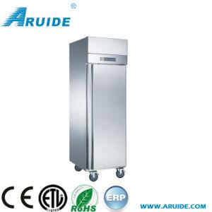 Frigorifero indipendente commerciale del professionista SUS304 con Ce e l'UL (D0.5L2FB)