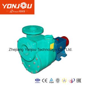 مضخة بلاستيكيّة كيميائيّة مع [إلكتريك موتور]