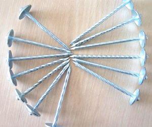 De zink Met een laag bedekte Spijker van het Dakwerk van de Paraplu Hoofd voor de Markt van Afrika
