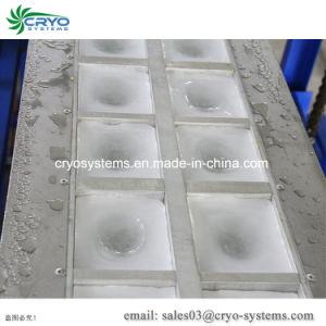 Cryo 2000kg (24h) plaque en aluminium blocs de glace de la machine a glace pour l'alimentation Store, bloc de glace au Pakistan de prix de la machine
