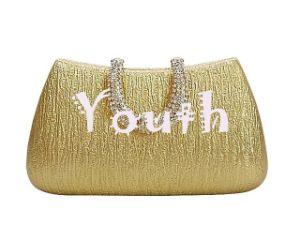 De Hand van de manier Pu doet Flanel Linning Dame in zakken Handbags Rhinestone Head Golden Handtas